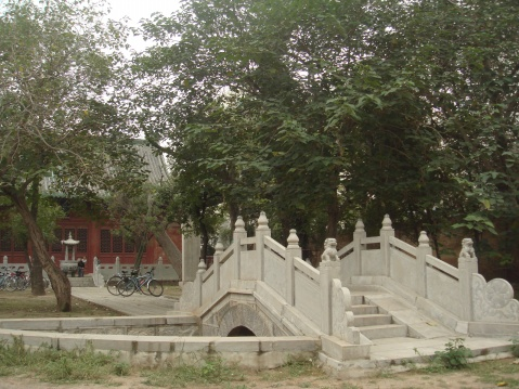 深秋游莘县雁塔、文庙 - 平凡的世界 - 平凡的世界