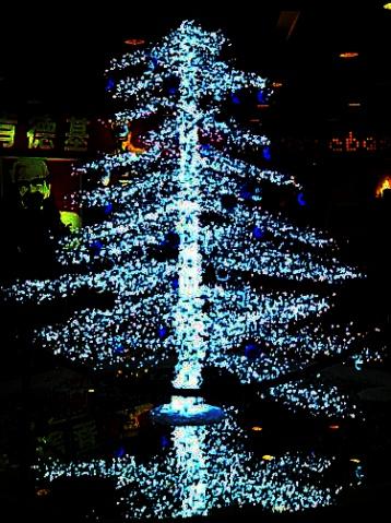 漂亮的圣诞树 - 嘟笃ぬ兜豆 - 嘟笃ぬ兜豆→豆仔坊