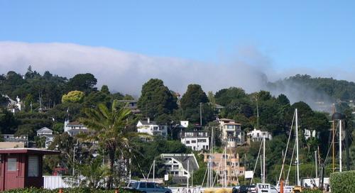 美国西部3城市探访-04-旧金山——山岭上的繁华都市 - 王志纲工作室 - 王志纲工作室