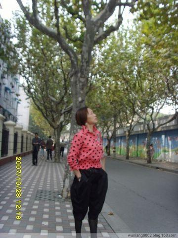 【原创】《秋的烦躁心情》 - wuniang0002 - 阳光舞娘的空间