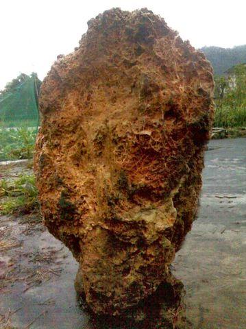 昆石(半玉石)坯料求加工创意和设计 - 梅花山人 -     疯狂的石头——梅花山人的一片天