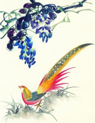 中国吉祥鸟类   - 浏帘往返 - 浏帘往返的博客