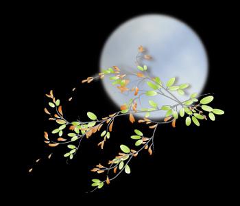(原创)月下思 - 疏勒河的红柳 - 疏勒河的红柳