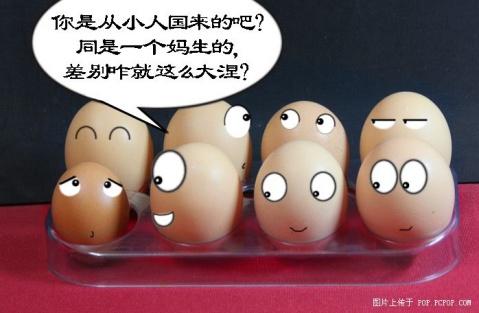 """可爱的问题鸡蛋(幽默图) - 渴望美好 - """"渴望美好""""的博客(读天下文、交天下友)"""