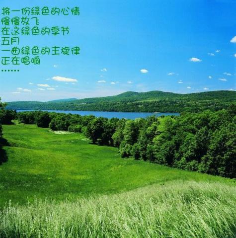 五月,绿色的主旋律【原创】 - ltouy - ltouy的博客