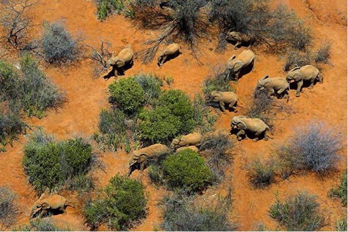 [转载]非洲:十张美到令人窒息的图片/组图
