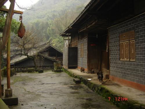 川藏茶马古道之天全游记(二) - 藏茶帝国 - 黑茶帝国的博客