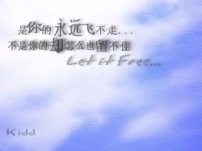 写给所有想爱的,在爱的和已经失去爱的人 - ccl.5820 - 相信会快乐