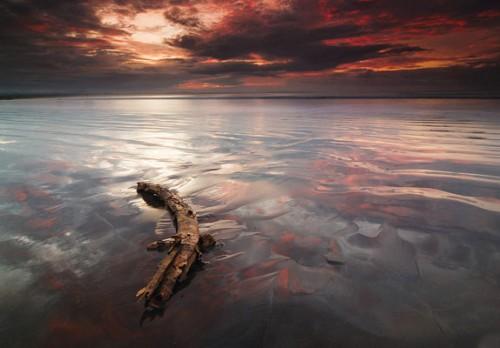 Song of Tide Landscape Photograph