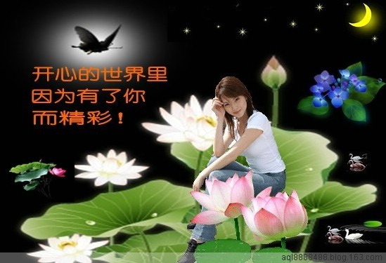 祝福(音画)祝朋友们五一节快乐 - 枫叶轻飘 - 枫叶轻飘欢迎您