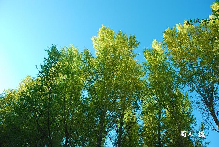 【转载】[原创摄影]与秋天同行(4) - 海韵 - 海韵的网易博客