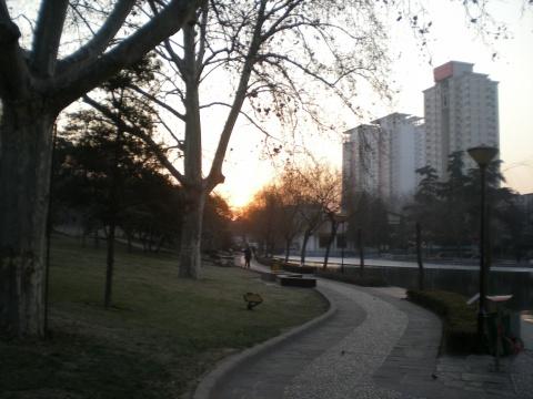 晨光中的紫荆山公园 - 往事如风 - 往事如风