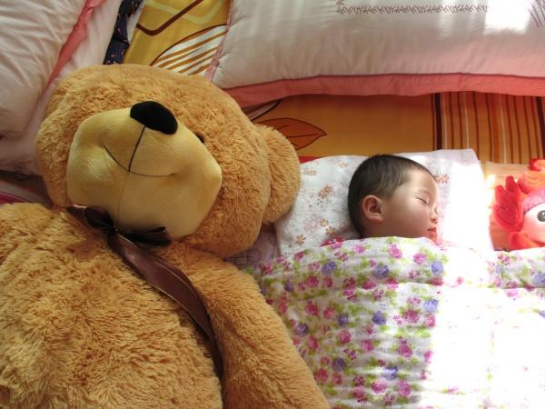 泰迪熊来啦! - 开心 - 开心的日子