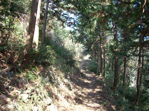 山居笔记(5)----    徒步七小时,一日看三县 - 山水悠游 - 山水悠游的博客