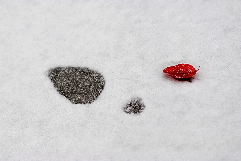 == 冬。雪2 == - 喜欢光脚丫的夏天 - 喜欢光脚丫的夏天