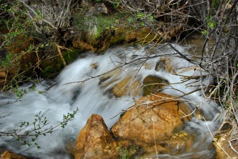 生命之水 - 卓巴 - 尕多觉卧的寻梦缘
