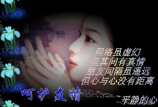 网情悠悠 - 紫盈 - ★紫☆盈★的博客