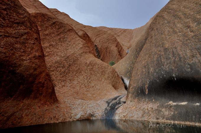 【北领地】乌鲁鲁(艾尔斯岩)-雨中的孤独神秘Rain@Uluru-Ayers Rock - 鱼儿 - 鱼儿的遨游生活