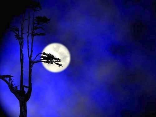 古人描写月亮的名句 - 纽约文摘 - 纽约文摘