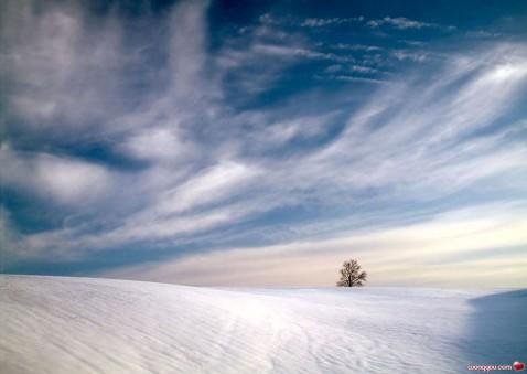 摄人魂魄的极品图片 - 宝旭 -  蓝色流星,天涯有情缘何旭博客