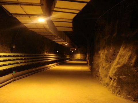 走进祁连山(七)——寺大隆的思考 - 大路的自然世界 - 大路的自然世界