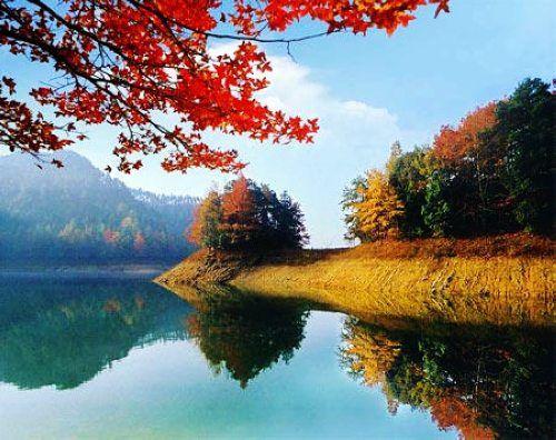 千岛湖随笔 - 桃李不言 - wn002052289 的博客