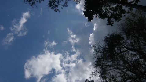 风起的时候 - 明明 - 梁明明的blog—光影之河
