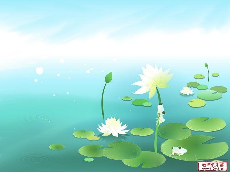 2011年01月14日 - 温柔的虎 - 结缘快乐 撒播真情