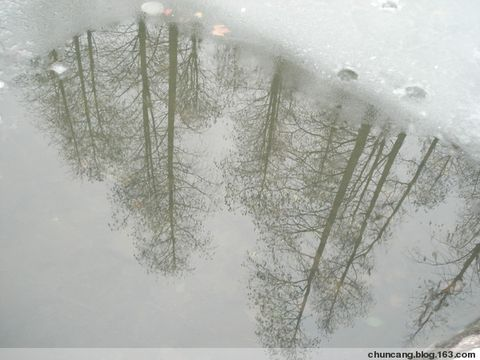 """[原创]2008年的第三场雪 - 春天灿烂 - """"春天灿烂""""的博客欢迎你!"""