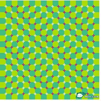五十张世界上的神奇图片,让你不相信自己的眼睛——思维的启示 - 灵湖晓枫 - 祥福乐-灵芝保健健康无限