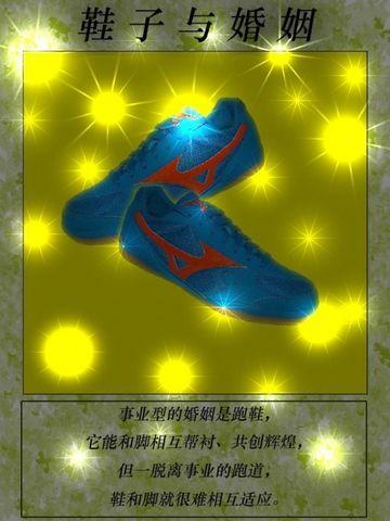 【引用】鞋子与婚姻(图文有趣)(转载) - 向镜州 - 向镜州博客——三循态百花园