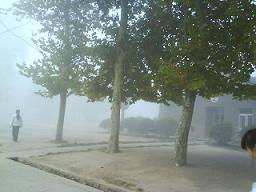 七绝、大雾[原创] - 白水泉 - 白水泉的博客