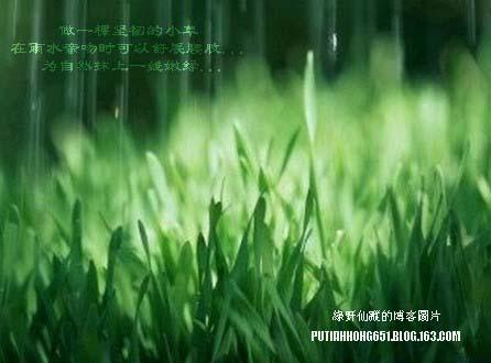 没有人在原处等你 - 绿野仙踪 - 绿野仙踪的博客