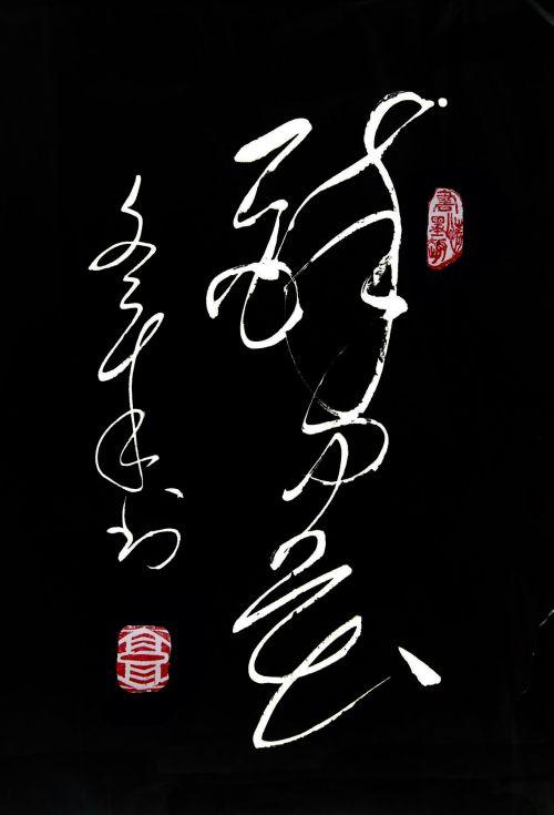 自题醉墨斋的斋号 - guowz2008 - 郭文章毛体书法