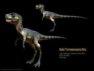 恐龙是怎样炼成的?-发育篇 - 邢立达 - 邢立达的恐龙频道