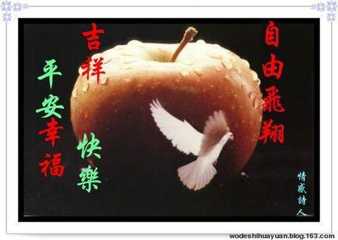 健康人生最大的财富 - 红 枫 - 红枫