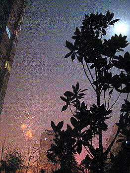 2009正月十五月儿小趣 - 六锐视觉 - ---- 六锐视觉 ----