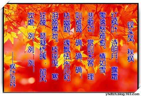 钗头凤.秋枫 - 枫叶流丹 - 枫叶流丹的心韵