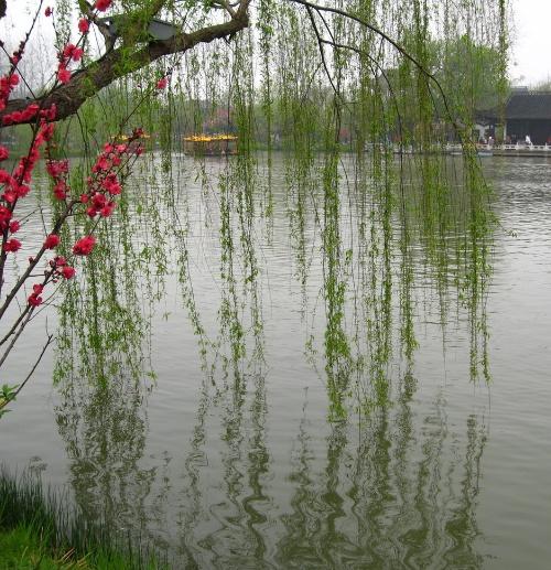 春天 让孩子走向田野【原】 - 金戈铁马 - 金戈铁马的博客