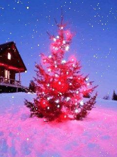 圣诞节,新年图片欣赏 - yeyibin2001 - yeyibin2001的博客