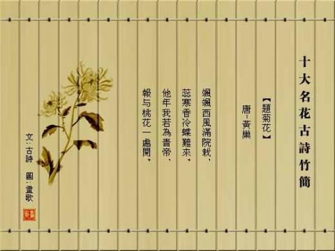 竹简画 - 草木一秋 - 豪 戈 的 博 客