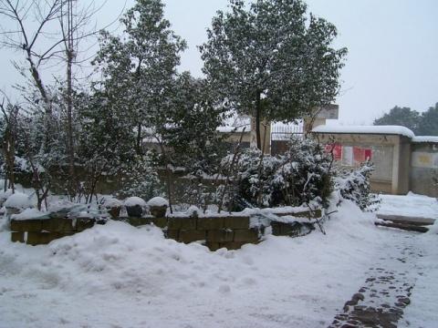 小寒下小雪 - 青山依旧在   - 青山依旧在  的  博客