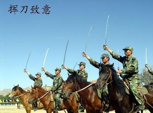 引自从军回忆录【原创】军旅人生  - 天山骑兵 - 天山骑兵博客