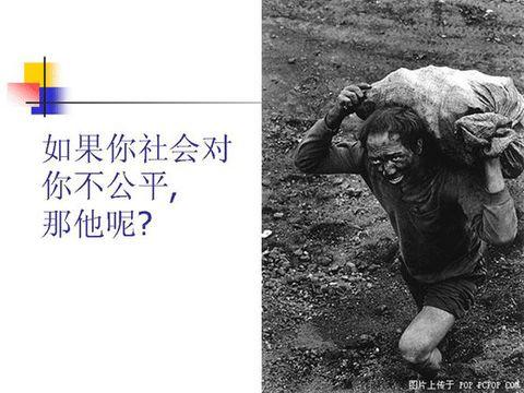每天值得一看的图片  - 卓子 - 东北虎的博客