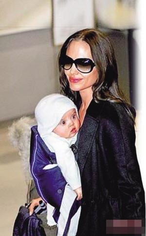 Angelina Jolie and Pitt Brad - plumwux - 小白牙的絮叨生活--活色生香
