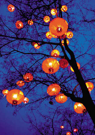 新年快乐 - 海生 - 诗意地栖居