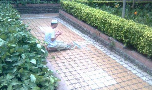 下午,广州新港西路 - 王小鲁 - 王小鲁的博客