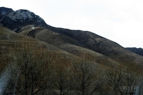[原创]青海玉树:高原奇山 - 羊毛剪刀 - 玉树藏大美