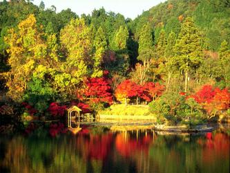 《秋天,生命的礼赞!》