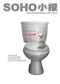 2009年第一期《小处不可随便》—你就是讨厌… - soho小报 - SOHO小报的博客